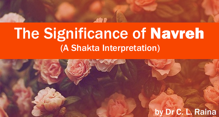 The Significance of Navreh