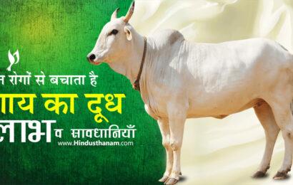 गाय के दूध के लाभ व विभिन्न रोगों में उपयोग (Benefits of Cow Milk)